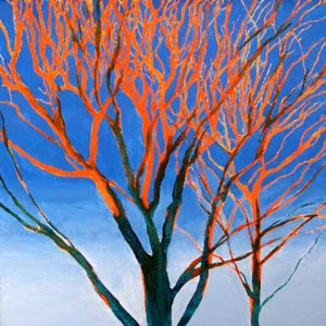 Joe-Webster_08_Orange-on-Blue-Tree-@Sunset