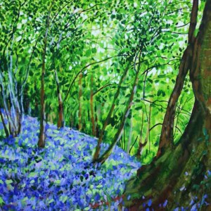 Joe-Webster_09_Bluebells&OakRoot