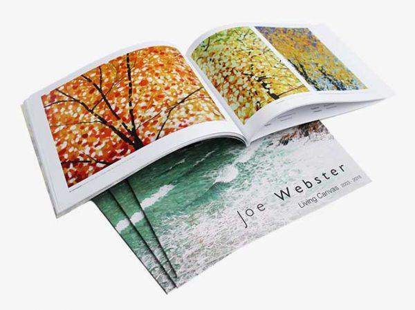 Joe's new book Living Canvas