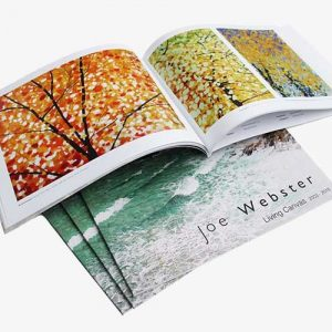 Joe's new book Living Canvas