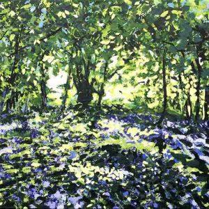 Devon Bluebell Wood