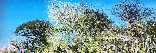 'Into the Lush British Hedgerow' by Devon Landscape-Graffiti Artist Joe Webster