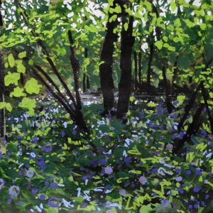 'Bluebells and Sycamore, River Lemon'