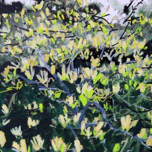 Yellow Magnolia I by Devon Landscape-Graffiti Artist Joe Webster