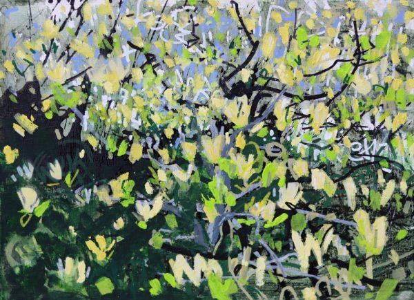 Yellow Magnolia II by Devon Landscape-Graffiti Artist Joe Webster